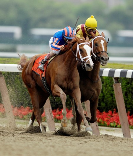 Better Than Honour achieved a rare back-to-back Belmont Stakes (gr. I) double when her daughter Rags to Riches won in 2007.