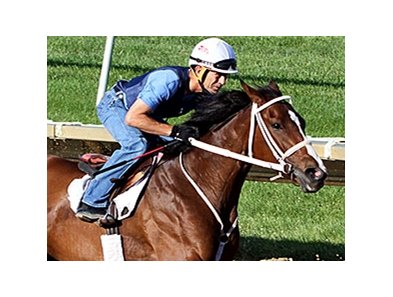 "Lovely Maria is being pointed to the $300,000 Delaware Oaks July 11.<br><a target=""blank"" href=""http://photos.bloodhorse.com/AtTheRaces-1/At-the-Races-2015/i-DTVmdz4"">Order This Photo</a>"