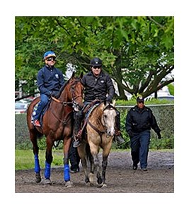 American Pharoah