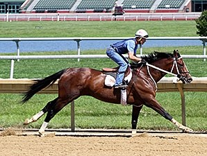 Normandy Invasion works at Delaware Park June 22.