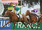New Bay wins the Prix Du Jockey.