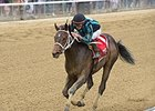 "Cocked and Loaded will try for a second straight stakes victory in the Sanford Stakes.<br><a target=""blank"" href=""http://photos.bloodhorse.com/AtTheRaces-1/At-the-Races-2015/i-v65bWmT"">Order This Photo</a>"