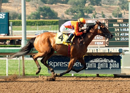 Spendthrift Farm's Beholder and jockey Gary Stevens win the $100,000 Grade III Adoration Stakes Saturday, June 13, 2015 at Santa Anita Park, Arcadia CA.