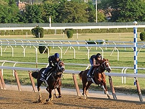 Carpe Diem and Madefromlucky at Belmont Park.