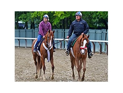 Frammento