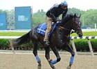 "Cozmic One<br><a target=""blank"" href=""http://photos.bloodhorse.com/AtTheRaces-1/At-the-Races-2015/i-3PMPCbC"">Order This Photo</a>"
