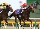 Maurice wins the Yasuda Kinen.