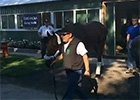 Triple Crown Winner Departs Belmont Park
