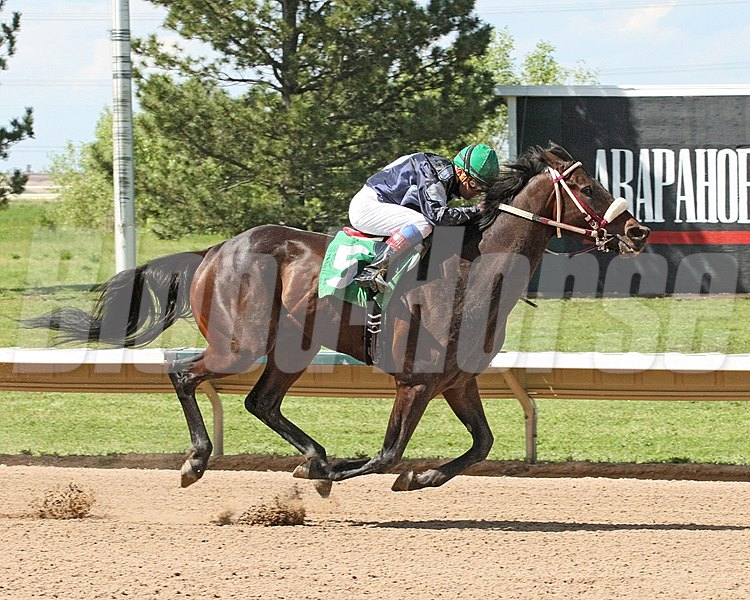 """MAGICAL TWIST""The AspenArapahoe Park   Aurora, ColoradoJune 13, 2015Purse $44,7806 Furlongs  1:10.89Eli Diamant, OwnerSharlot Martinez, TrainerDennis Collins, JockeyMr Wild Kitty (2nd)E F Five (3rd)$8.20 $4.80 $4.00Order of Finish - 5, 4, 3, 2Please Give"