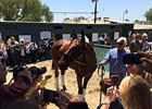 American Pharoah Returns Home at Santa Anita