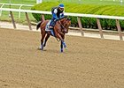 "All eyes are on American Pharoah.<br><a target=""blank"" href=""http://photos.bloodhorse.com/TripleCrown/2015-Triple-Crown/Belmont-Stakes-147/i-ZW5jnHT"">Order This Photo</a>"