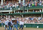"American Pharoah greeted by the fans at Churchill Downs.<br><a target=""blank"" href=""http://photos.bloodhorse.com/AtTheRaces-1/At-the-Races-2015/i-xL8Hvnv"">Order This Photo</a>"
