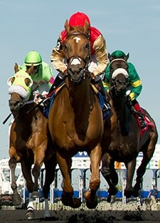 Checkered Past wins the 2015 Trillium Stakes.