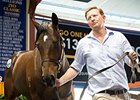 A colt, lot 2057, by young sire Foxwedge was the sale-topper at Aus$340,000 (U.S.$261,800).