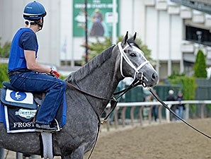 Frosted at Belmont Park