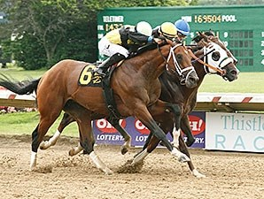 Mr. Z (center, blinkers) gets his head in front to win the Ohio Derby.