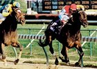 Escena running in the 1998 Breeders' Cup Distaff.