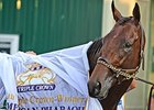 "American Pharoah can add to his legacy with a victory in the Breeders' Cup Classic.<br><a target=""blank"" href=""http://photos.bloodhorse.com/TripleCrown/2015-Triple-Crown/Belmont-Stakes-147/i-jdN7mrj"">Order This Photo</a>"