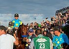 American Pharoah in the Belmont Park winner's circle.
