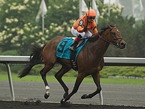 Academic wins the Woodbine Oaks.