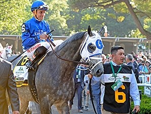 Frosted finishes second in the 2015 Belmont Stakes.