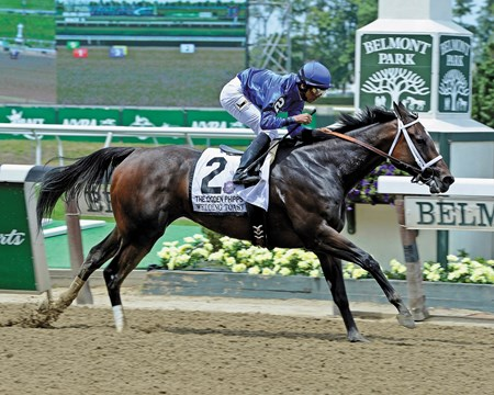 Second choice Wedding Toast led all the way in the $1 million Ogden Phipps Stakes (gr. I) at Belmont Park, drawing off to win by five lengths while favored champion Untapable was second.