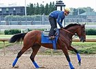 American Pharoah Schools, Back to Galloping