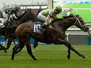Lockout came running late to win the Connaught Cup.