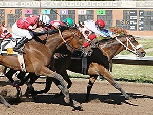 That's Who wins the University of New Mexico Handicap.