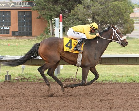 OL WINEDRINKER WHO
