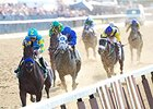 American Pharoah running in the Belmont Stakes.
