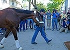 Post Belmont Stakes News Update for June 7