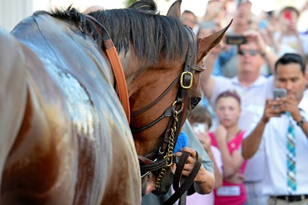 Caption: parading iwth fans 