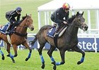 Undefeated Golden Horn Rolls into Epsom Derby
