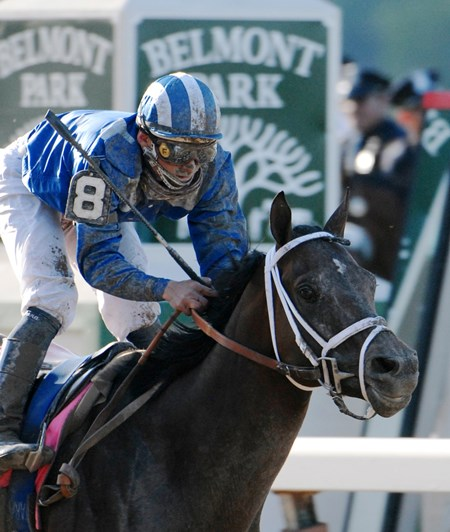 Better Than Honour first experienced success as a broodmare with Jazil, who earned $890,532, including a win in the 2006 Belmont Stakes (gr. I).