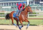 American Pharoah Gallops, Will Breeze June 1