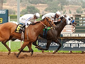 Distinctiv Passion wins the Los Angeles Stakes.