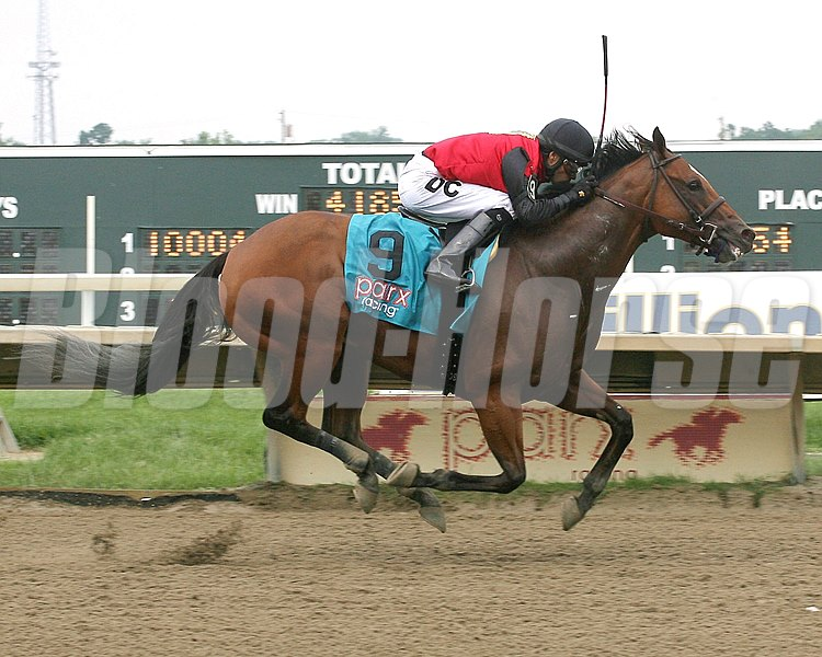 A.P. Indian is victorious in the $100,000 Donald LeVine Memorial Handicap at Parx Racing in Bensalem, Pennsylvania.