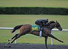 Hip 925, Spectacular Vow, a Broken Vow filly, worked the fastest quarter mile of the day, getting the distance in :20 3/5.