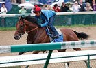 American Pharoah works at Churchill Downs June 1.