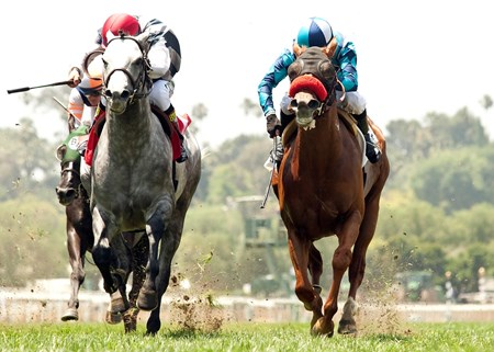 Oliver's Tale and jockey Tyler Baze (right) hold off Holy Lute to win the $75,000 Siren Lure Stakes at Santa Anita Park.