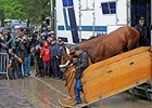 American Pharoah arrives at Belmont Park June 2.