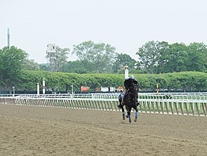 Cozmic One - Belmont Park, May 27, 2015