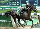 "Irish Jasper comes home strong to win the Victory Ride Stakes.<br><a target=""blank"" href=""http://photos.bloodhorse.com/AtTheRaces-1/At-the-Races-2015/i-tmLKzvb"">Order This Photo</a>"