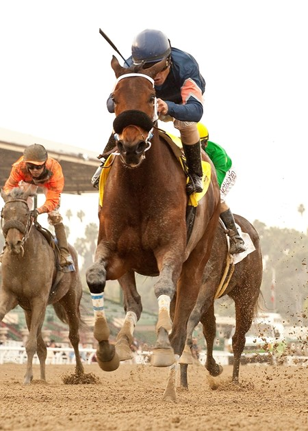 Myron Miller's Golden Production and Martin Pedroza win the $75,000 Paseana Stakes Sunday on January 12, 2014 at Santa Anita Park.