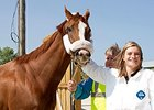 California Chrome arrives at Arlington, greeted by exercise rider Anna Wells.