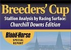 BC Stallion Analysis by Racing Surface