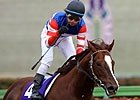 Breeders' Cup Chat: Classic City