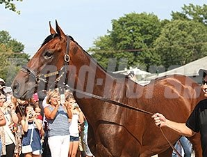 American Pharoah arrives at Monmouth Park for the Haskell.