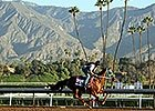 Breeders' Cup Buzz 2014
